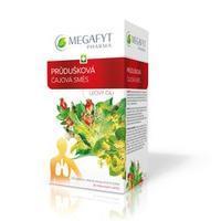 Megafyt Průdušková čajová směs por spc 20x1,5g