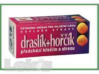 Draslík+Hořčík 60tbl. Naturvita