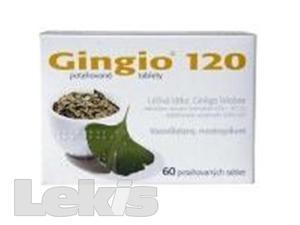 GINGIO 120 POR.TBL.FLM.60X120MG
