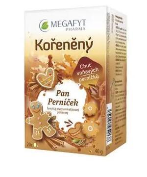 CAJ Megafyt Kořeněný pan Perníček 20x2g - 1