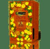 Megafyt Ovocný Zázvor s citrónem a chilli 20x2g - 2